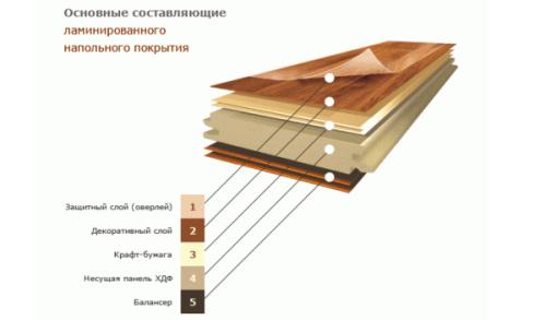 Схема основных составляющих ламината